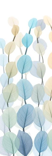 Lanterns On White 2 Poster Print by Albert Koetsier # AK8PL033B