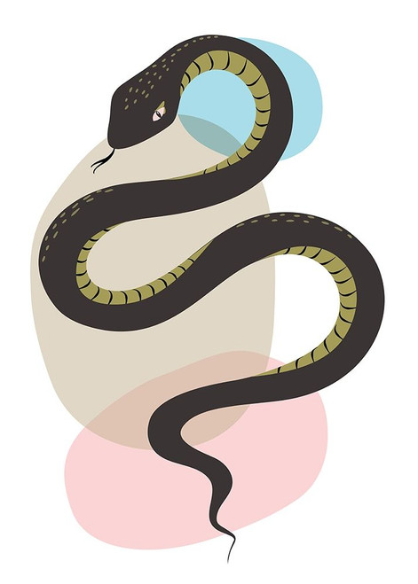 Snake Poster Print by Ayse Ayse # A671D