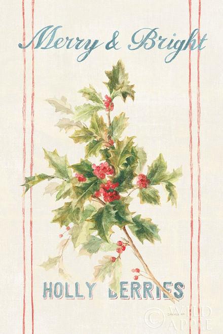 Floursack Holiday Bright I v2 Poster Print by Danhui Nai # 65056