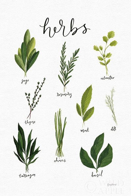 Herbs I White Poster Print by Becky Thorns # 64689