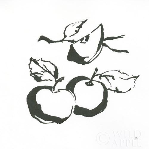 Apples BW Poster Print by Chris Paschke # 64208