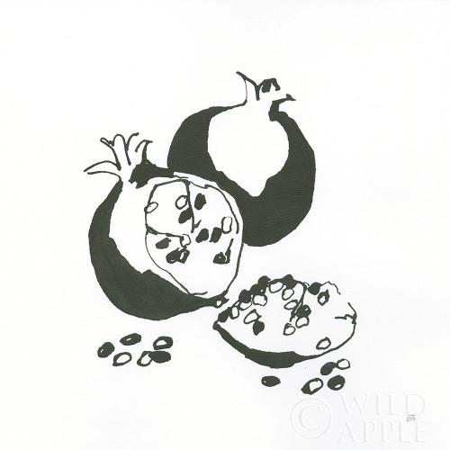 Pomegranate II BW Poster Print by Chris Paschke # 64224