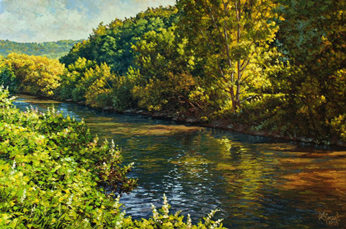 Nitra River in Spring Poster Print by Peter Ziman # 6BUR153
