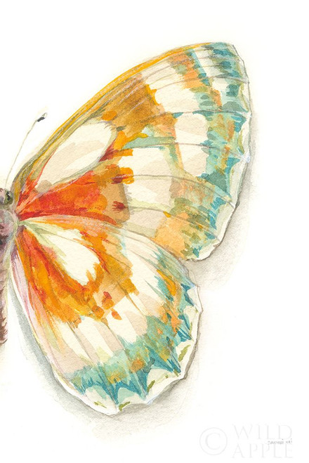 Fragile Wings IV Poster Print by Danhui Nai # 65688