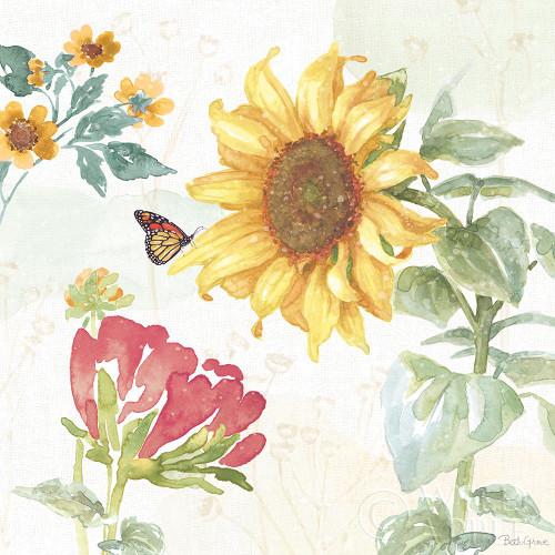 Sunflower Splendor VIII Poster Print by Beth Grove # 65346