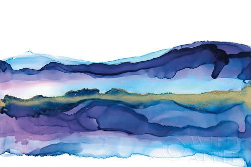 Coastal Ink I Poster Print by Chris Paschke # 65436