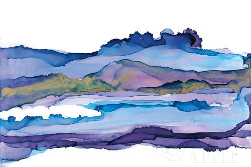 Coastal Ink II Poster Print by Chris Paschke # 65437
