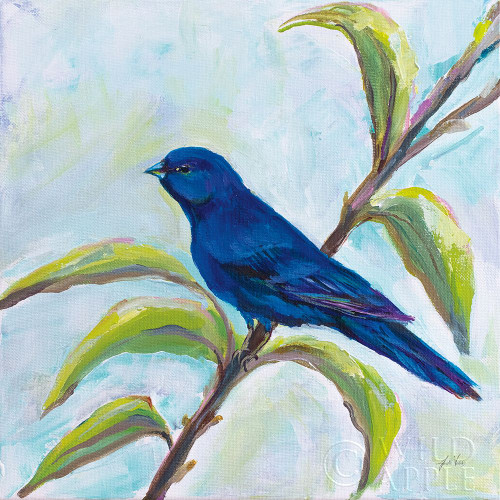 Indigo Bunting Poster Print by Jeanette Vertentes # 63459