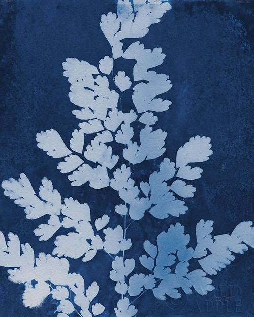 Enchanted Cyanotype VII Poster Print by Nancy Green # 63383