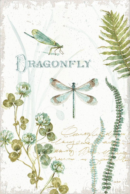 My Greenhouse Botanical Dragonfly Poster Print by Lisa Audit # 63181
