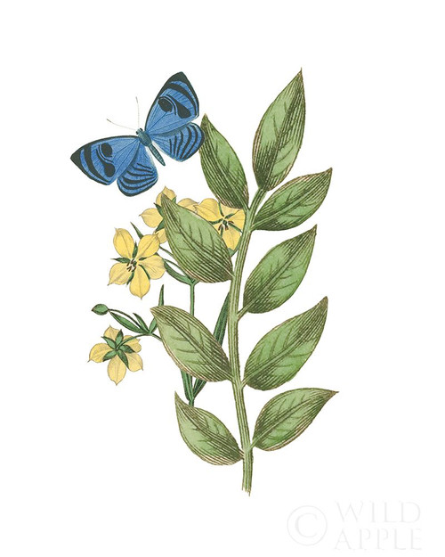 Greenery Butterflies IV Poster Print by Wild Apple Portfolio Wild Apple Portfolio # 62788