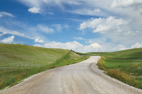 Gravel Road Near Choteau Montana I Poster Print by Alan Majchrowicz # 62460