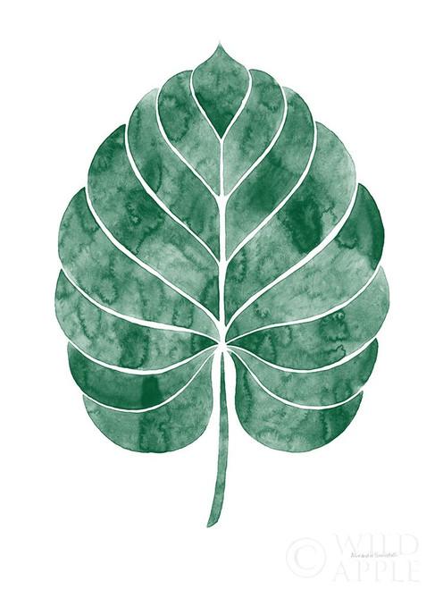 Botanic Inspiration III No Words Poster Print by Alexandra Snowdon # 61609