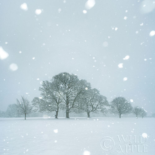 Winter Landscape I Poster Print by Andre Eichman # 60919