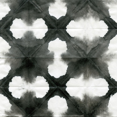 Aquarelle Black and White Square XIII Poster Print by Nancy Green # 60609