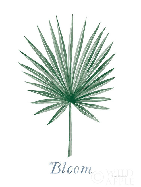 Botanic Inspiration II Poster Print by Alexandra Snowdon # 60066