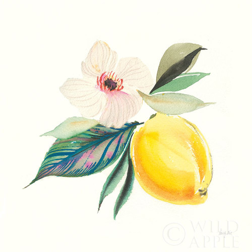 Citrus Summer III Poster Print by Kristy Rice # 58104