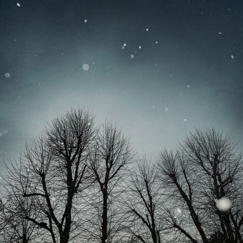 Winter Sky Poster Print by Andre Eichman # 57675