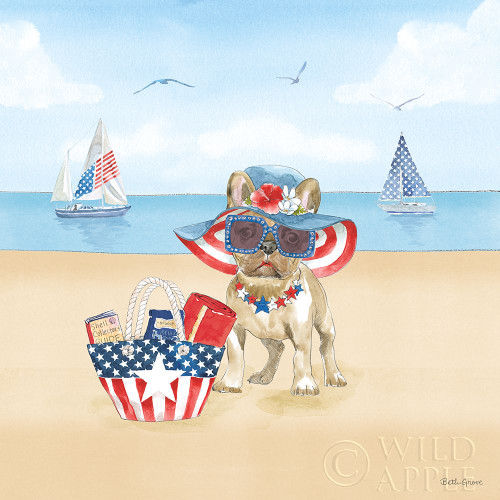 Summer Paws Patriotic IV Poster Print by Beth Grove # 57365