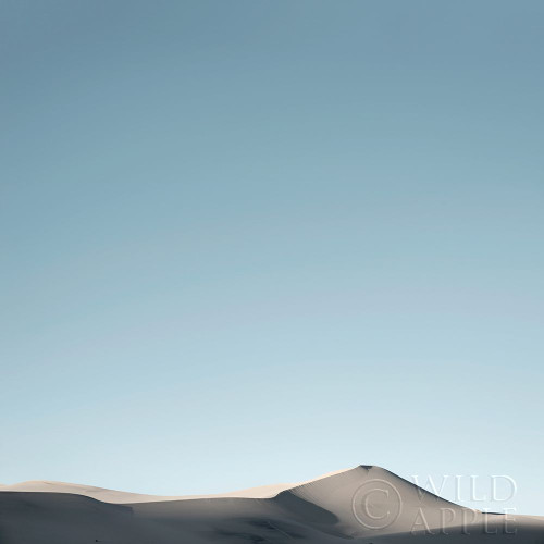 Sand Dunes IV Poster Print by Andre Eichman # 57671
