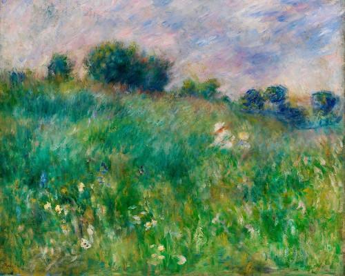 Meadow 1880 Poster Print by Pierre-Auguste Renoir # 57139