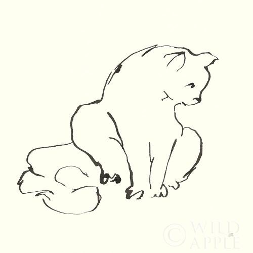 Line Kitten II Poster Print by Chris Paschke # 58637