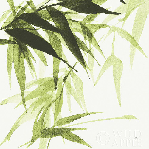 Bamboo IV Green Poster Print by Chris Paschke # 58946