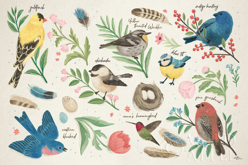 Bird Study I Poster Print by Janelle Penner # 58594