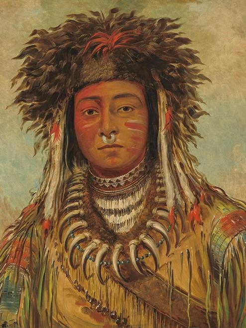 Boy Chief - Ojibbeway Poster Print by George Catlin # 56056