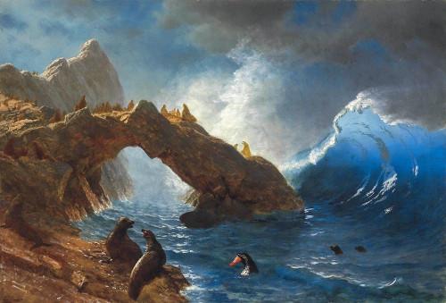 Seals on the Rocks Poster Print by Albert Bierstadt # 55893