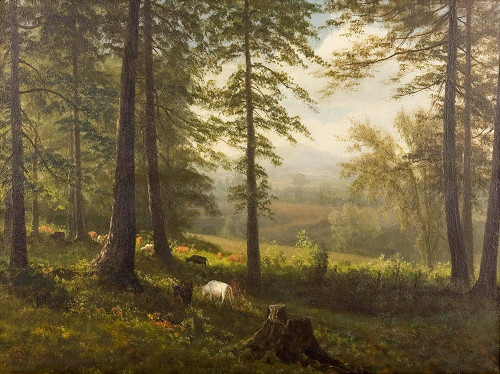 View to a Clearing Poster Print by Albert Bierstadt # 55810