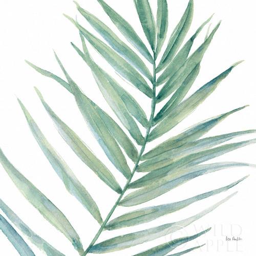 Tropical Blush IX BG Poster Print by Lisa Audit # 56373