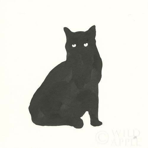 Black Cat V Poster Print by Chris Paschke # 56273