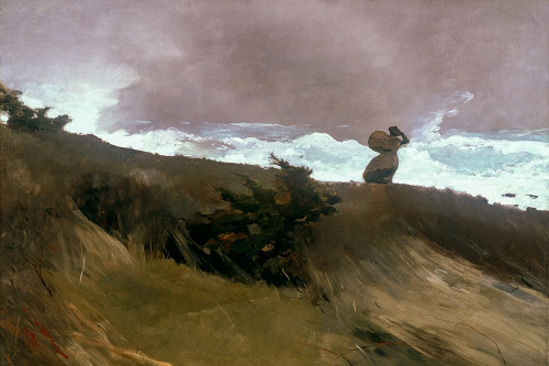 The West Wind Poster Print by Winslow Homer # 56149