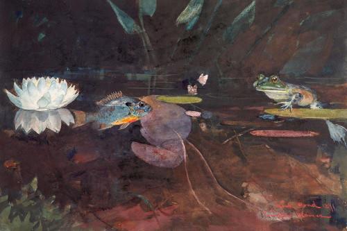 Mink Pond Poster Print by Winslow Homer # 56174