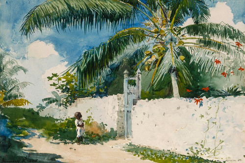 A Garden in Nassau Poster Print by Winslow Homer # 56196