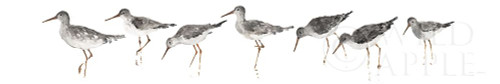 Sandpipers Panel Gray Poster Print by Avery Tillmon # 55296