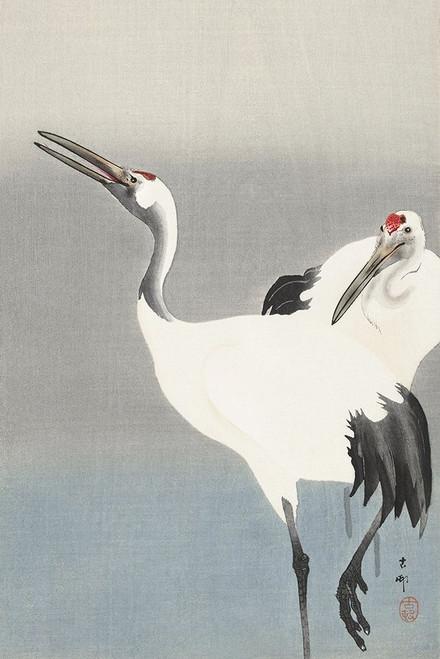 Two cranes Poster Print by Ohara Koson # 55151