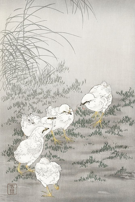 Five chicks Poster Print by Ohara Koson # 55315