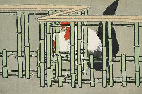 Roosters from Momoyogusa Poster Print by Kamisaka Sekka # 54926