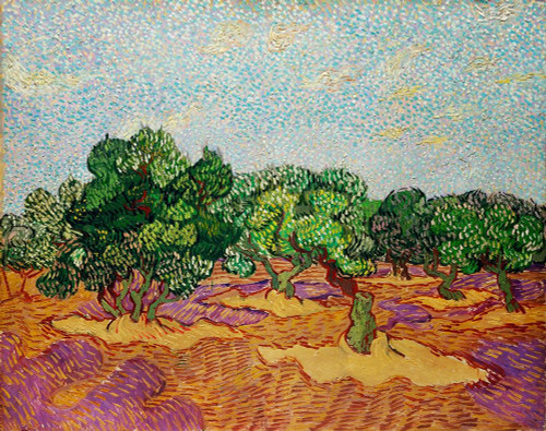 Olive Trees Poster Print by Vincent Van Gogh # 53761