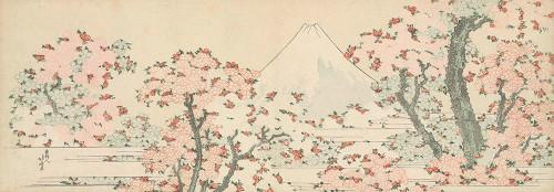 Mount Fuji with Cherry Trees in Bloom Poster Print by Katsushika Hokusai # 4HK5458