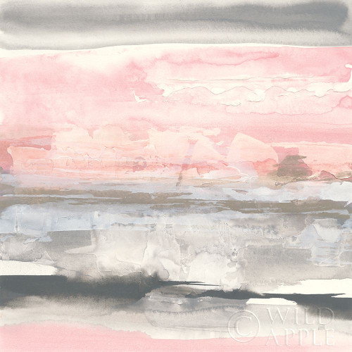 Charcoal and Blush II Poster Print by Chris Paschke # 49058