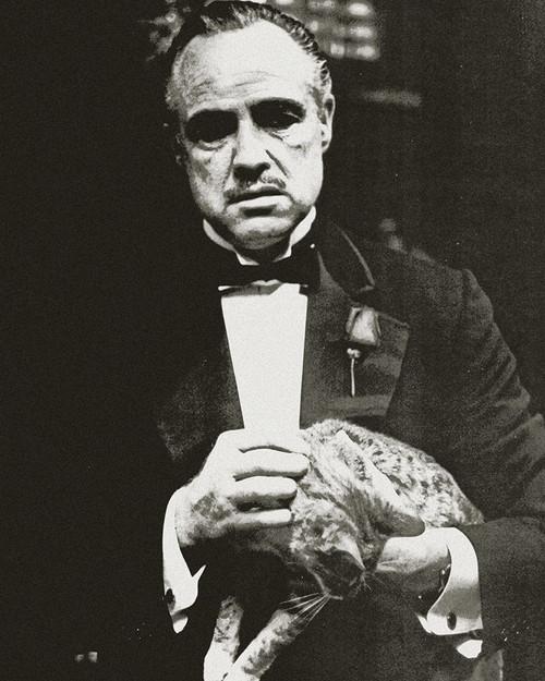 Marlon Brando - The Godfather Poster Print by Hollywood Photo Archive Hollywood Photo Archive # 490927