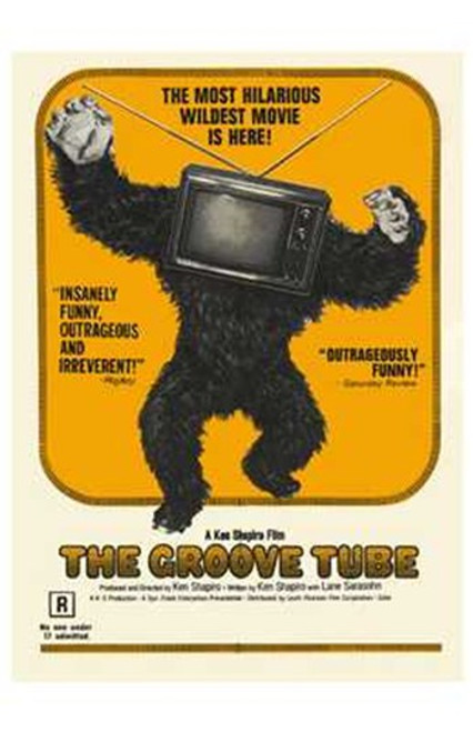 The Groove Tube Movie Poster (11 x 17) - Item # MOV193520