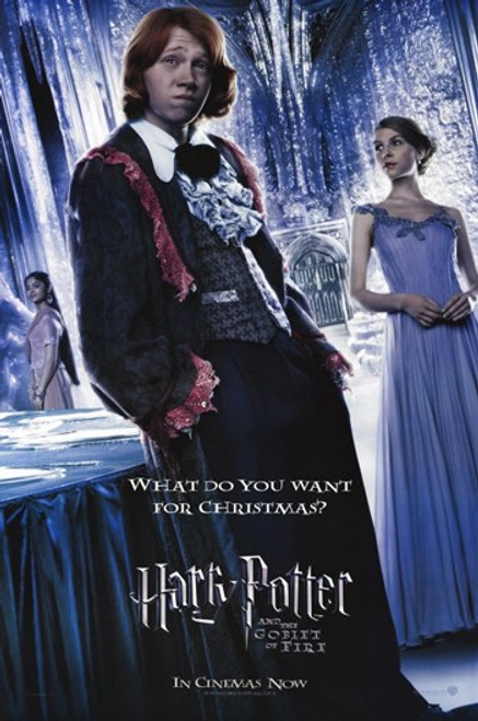 Harry Potter and the Goblet of Fire Movie Poster (11 x 17) - Item # MOV352754
