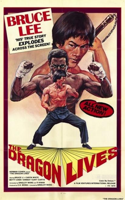 Dragon Lives Movie Poster (11 x 17) - Item # MOV209849