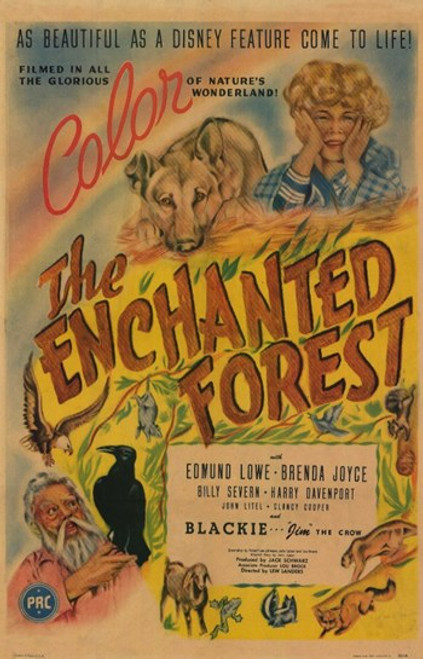 The Enchanted Forest Movie Poster (11 x 17) - Item # MOV209889