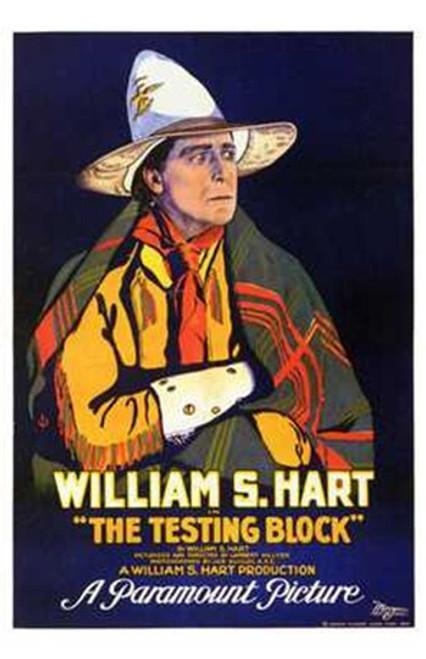 The Testing Block Movie Poster (11 x 17) - Item # MOV199050