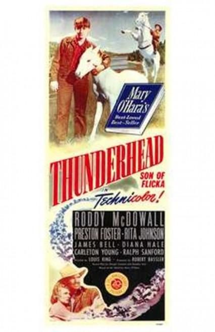 Thunderhead - Son of Flicka Movie Poster (11 x 17) - Item # MOV174166
